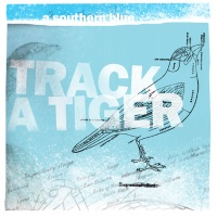 Track a Tiger - A Southern Blue